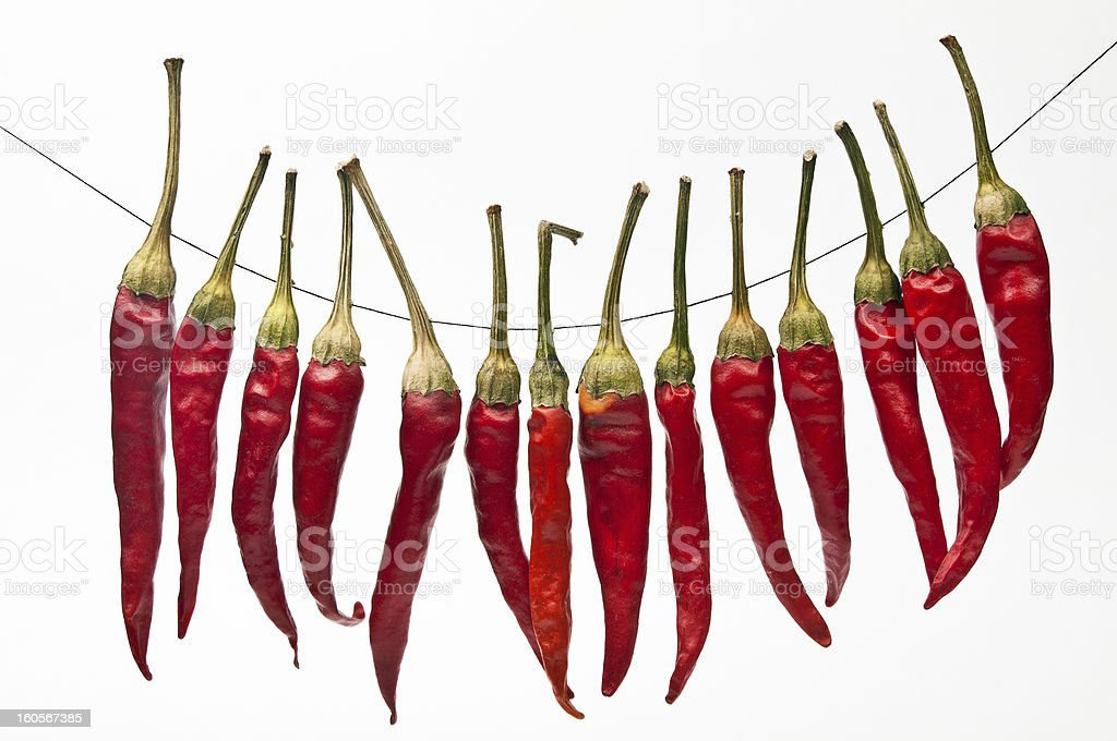 Red dried peppers on string royalty-free stock photo