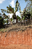 Red earth in Laos