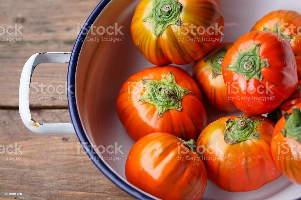 Red eggplant (Solanum aethiopicum) stock photo