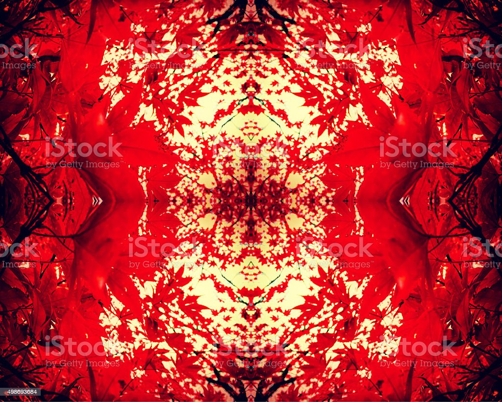 Red fall leaves kaleidoscope background royalty-free stock photo
