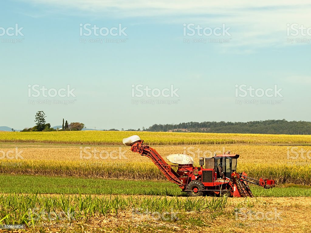 Red Farm machine cane harvester on Australian agriculture land stock photo