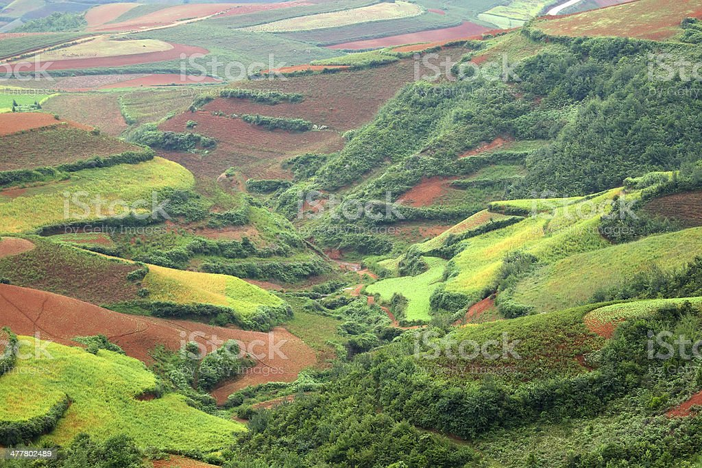 Red farmland in dongchuan of China royalty-free stock photo