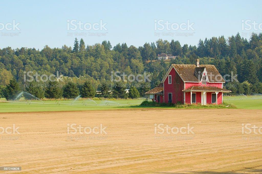 Red farmouse stock photo