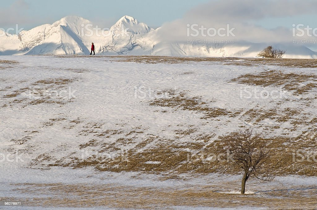 Red Figure Admiring View Snowy Plateau Mountains royalty-free stock photo