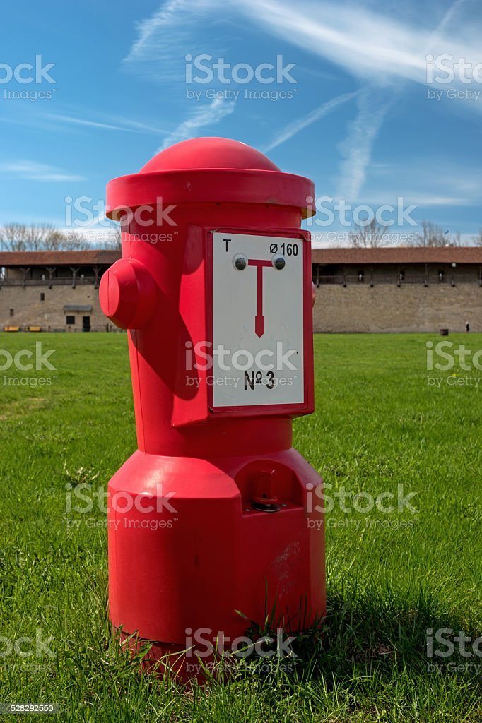 Red fire hydrant on the green grass. stock photo