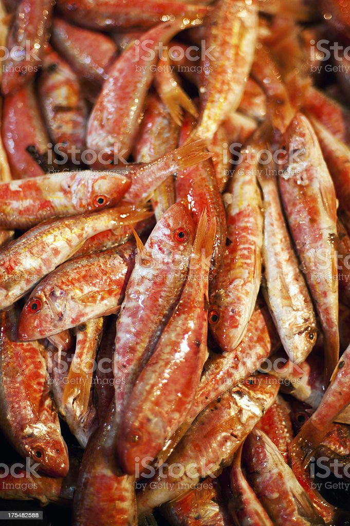 Red fish on market stock photo