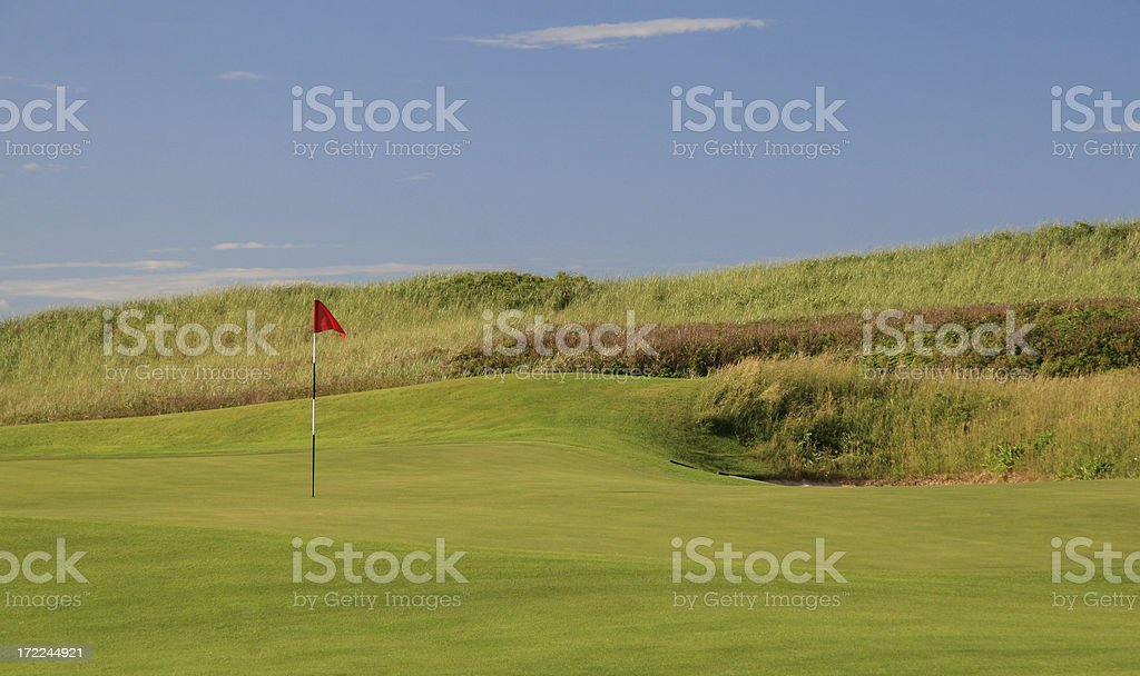 Red Flag on the Green royalty-free stock photo
