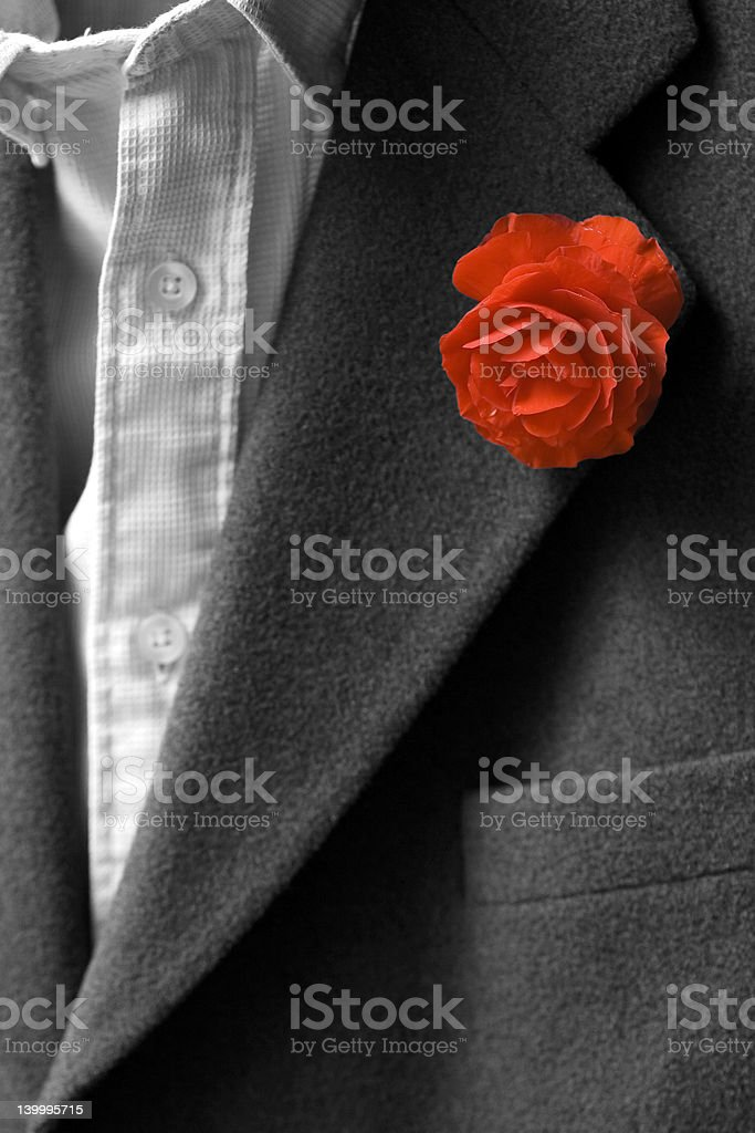 Red flower in buttonhole royalty-free stock photo