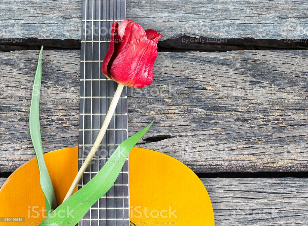 red flower on classical acoustic guitar / on old wood stock photo