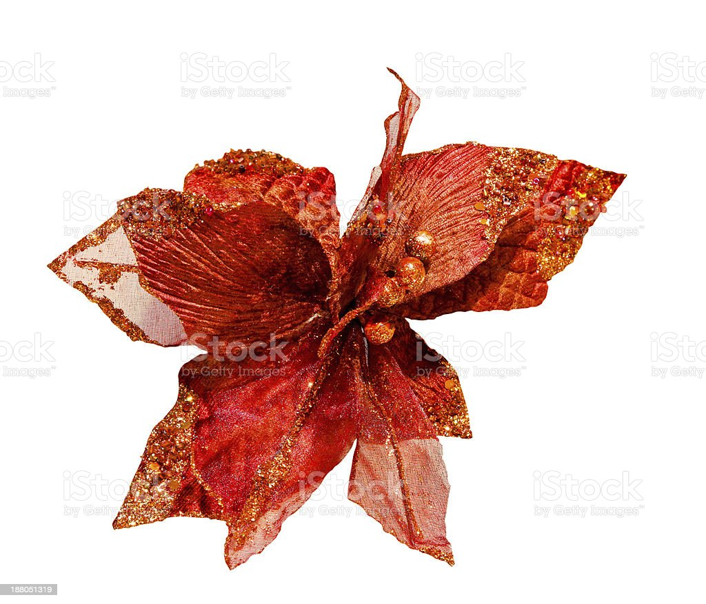 Red flower royalty-free stock photo
