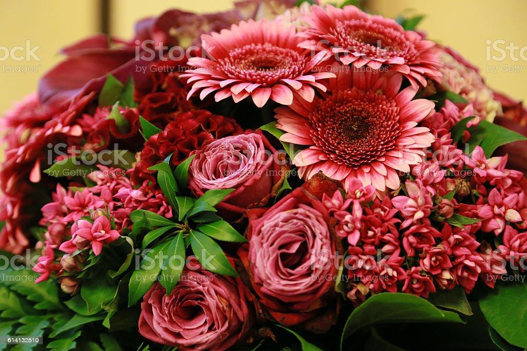 Flor roja  foto de stock libre de derechos