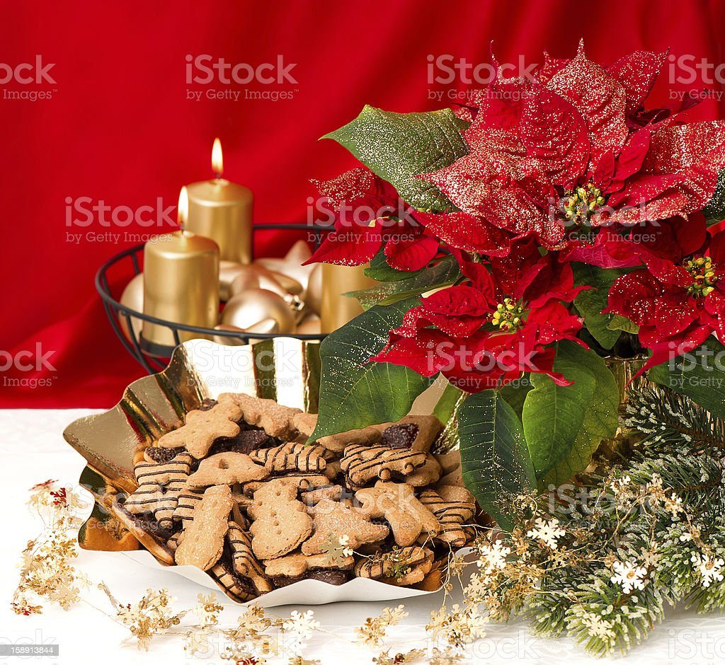 red flower poinsettia and christmas cookies royalty-free stock photo
