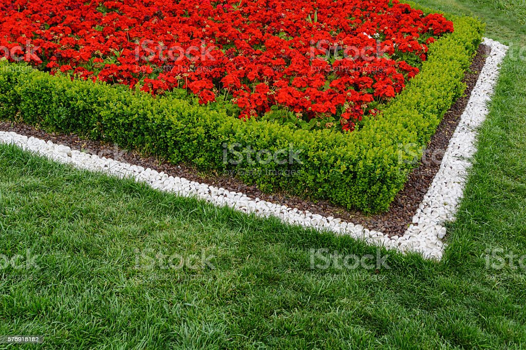 Red flowerbed of white stones on a juicy green grass stock photo