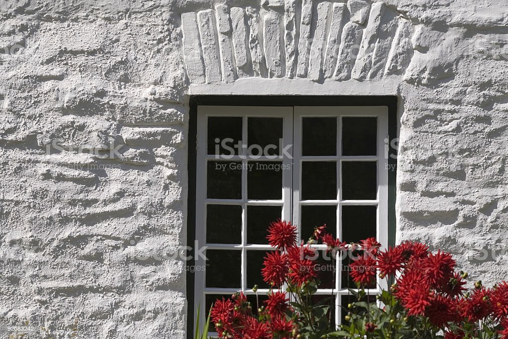 red flowers in front of a white painted cottage wall royalty-free stock photo