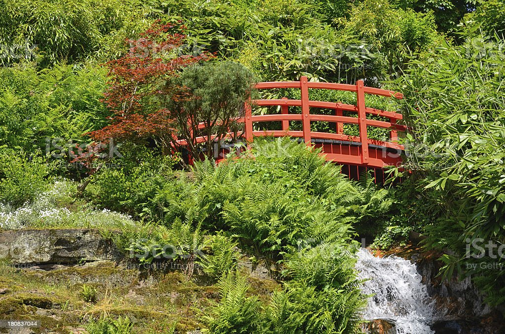 Red footbridge and waterfall in japanese garden royalty-free stock photo