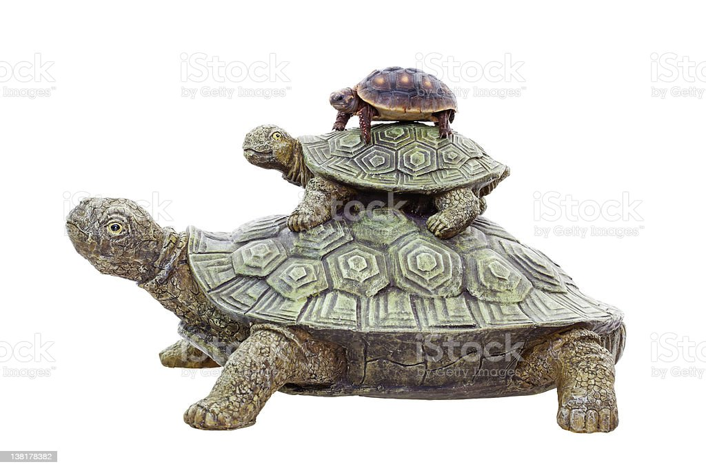 Red Footed Tortoise on Top royalty-free stock photo
