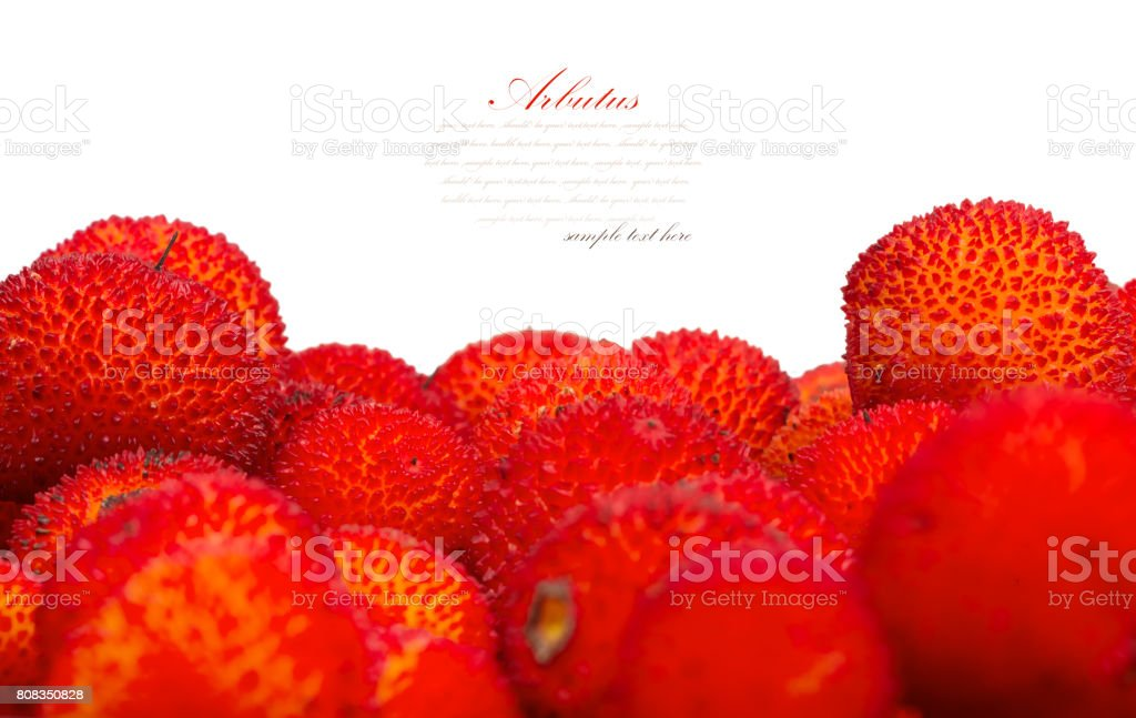 red fruits of Arbutus unedo. stock photo