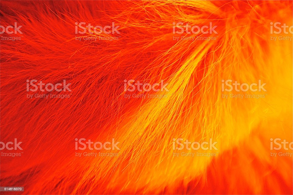 red fur animal hair skin background pattern cotton soft stock photo