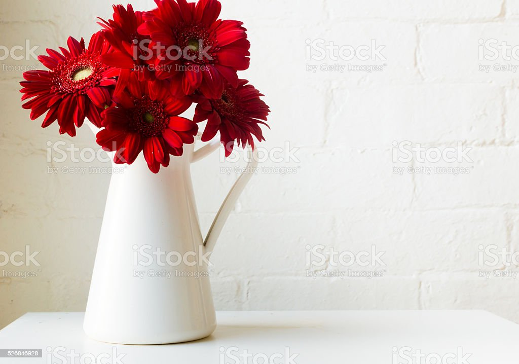 Red gerberas in white jug stock photo