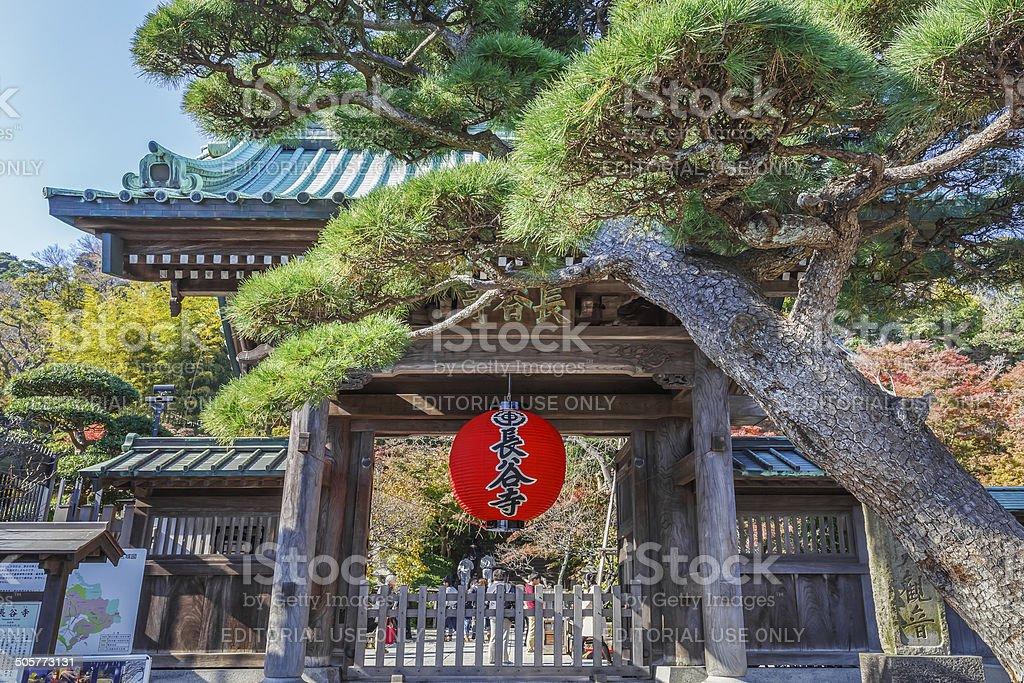 Red Giant Lantern at Hasedera Temple in Kamakura stock photo