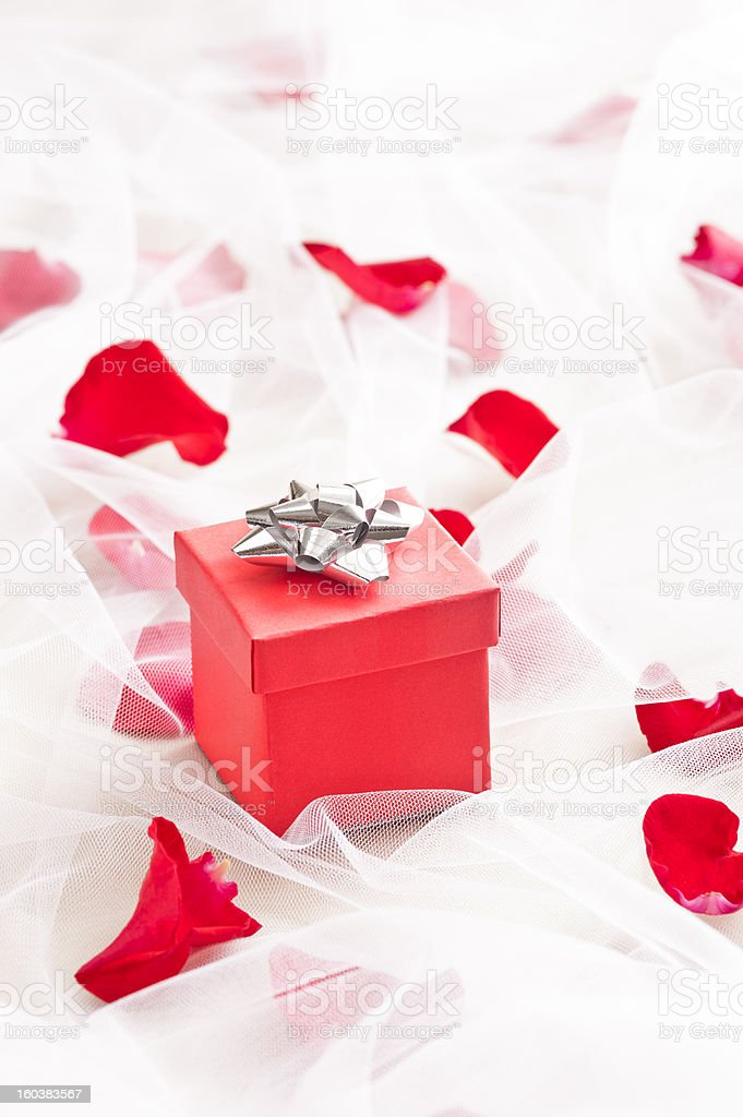 Red Gift box with silver bow on wedding veil royalty-free stock photo
