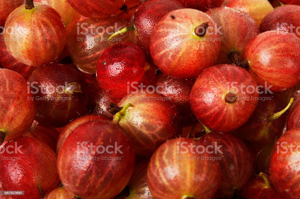 Red gooseberries as background stock photo