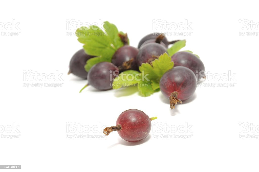 Red Gooseberries with Leaves royalty-free stock photo