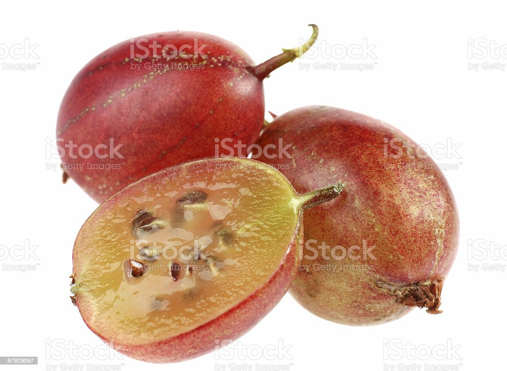 Red gooseberry royalty-free stock photo