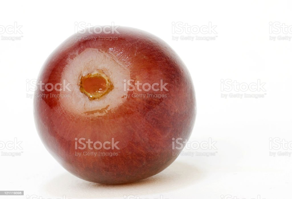 Red Grape Macro royalty-free stock photo