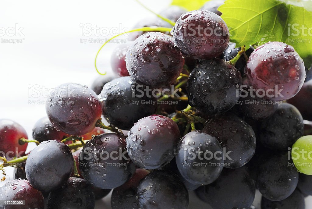 Red Grape royalty-free stock photo