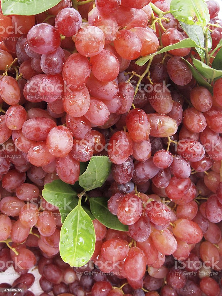 Red grape with water drops, closeup background royalty-free stock photo