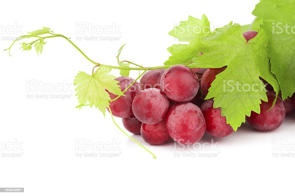 Red Grapes Isolated On White Background royalty-free stock photo
