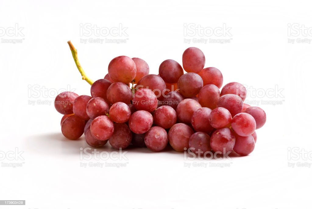 Red grapes on the vine on a white background stock photo