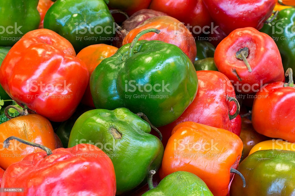 Red, green and yellow chilli pepper from Peru called 'rocoto' stock photo
