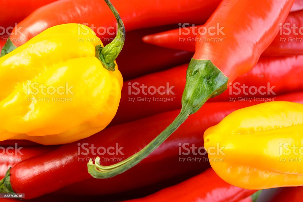 Red, green and yellow peppers close up stock photo