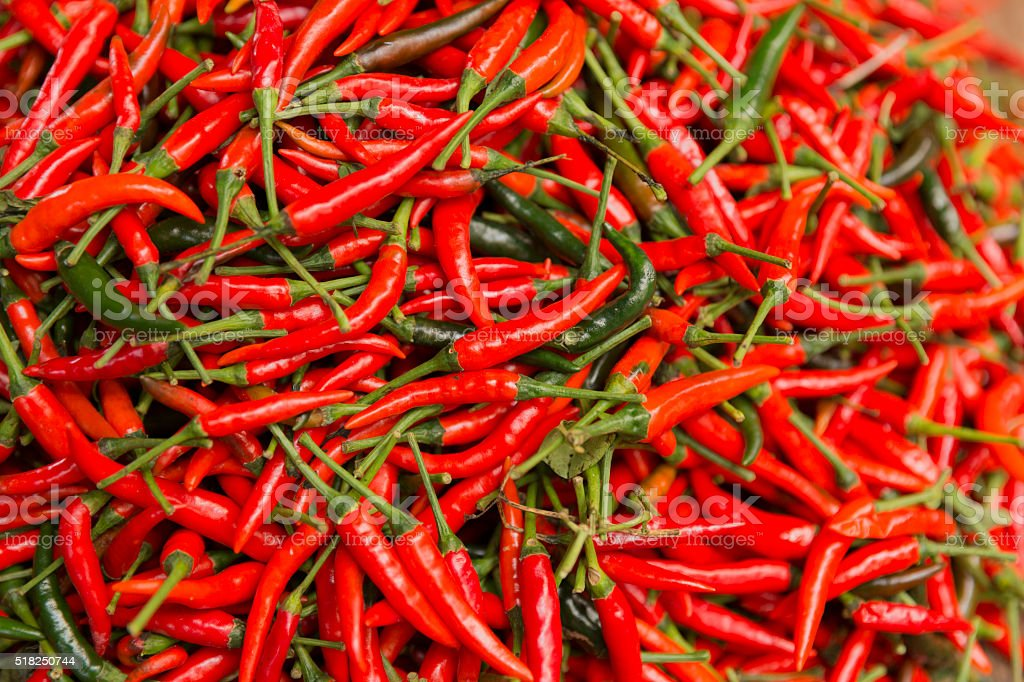 red guinea-pepper stock photo