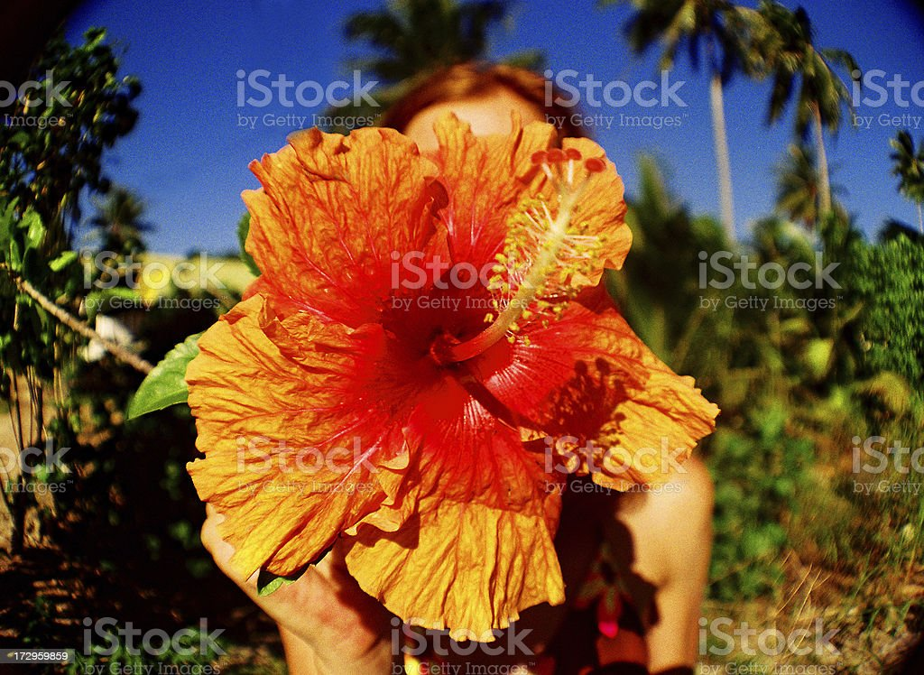 Red haired girl on Hawaii with flower. Fisheye lens royalty-free stock photo