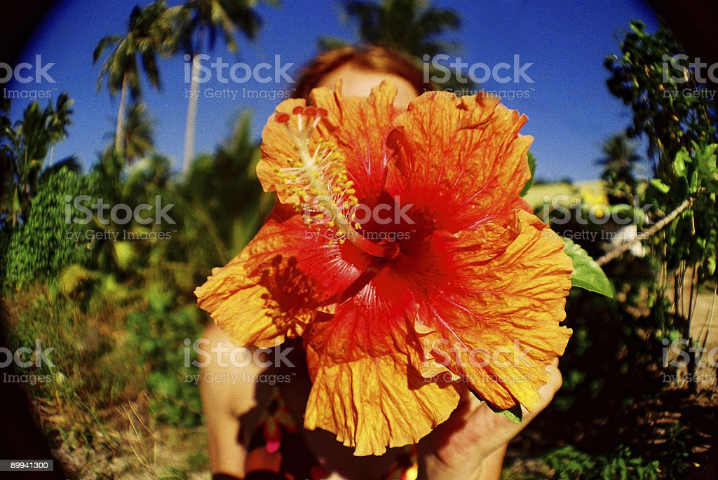 Red haired girl on Hawaii with flower. Fisheye lens stock photo