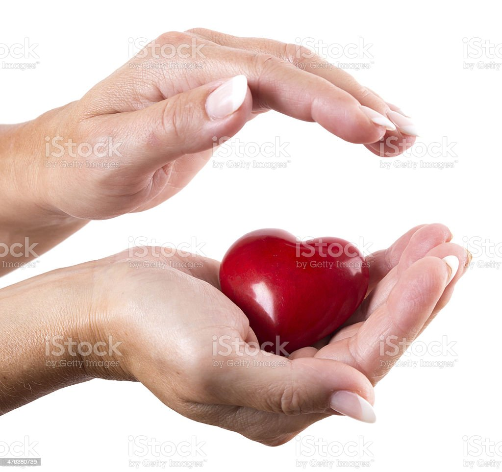 Red heart in woman hands on white stock photo