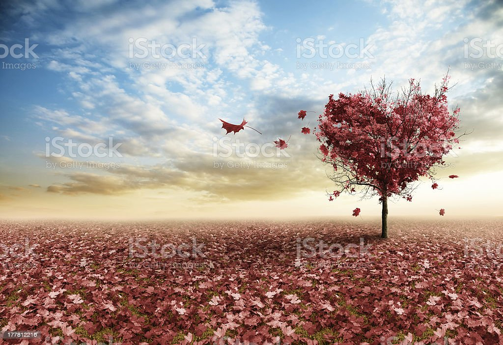 Red heart tree stock photo