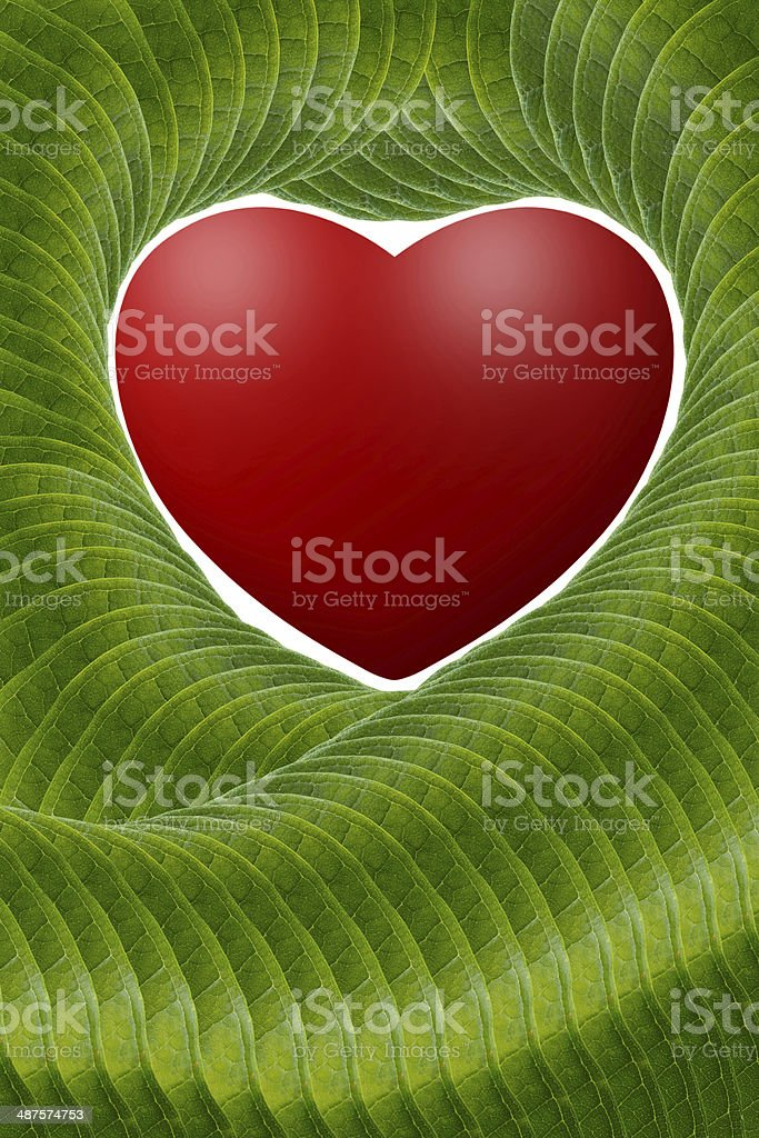 Red  heart with green leaves. royalty-free stock photo