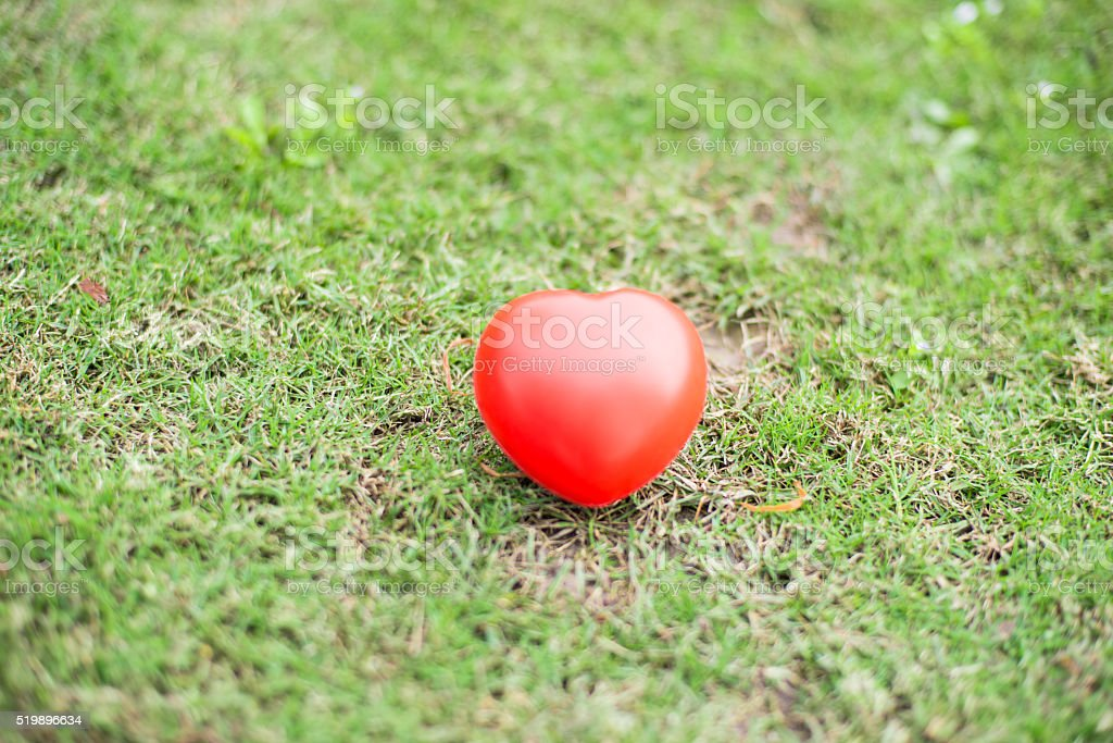 Red hearts on green grass. Vintage filter. stock photo