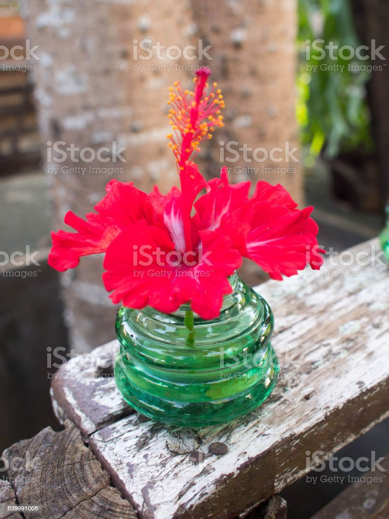 Red hibiscus flowers in a crystal vase on wooden floor. stock photo