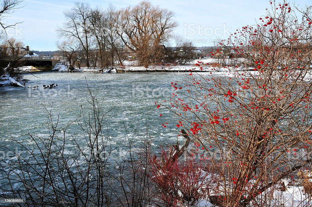 Red highlights on frozen creek stock photo
