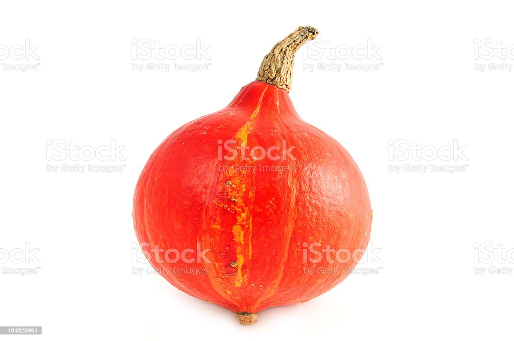 Red Hokkaido pumpkin on white background stock photo