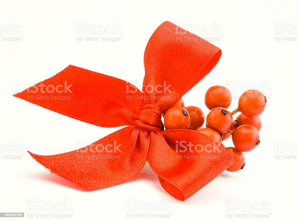 red holly berries on white background stock photo