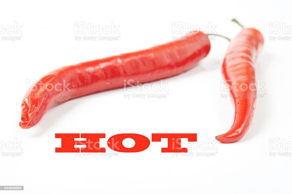 Red hot chili pepper stock photo