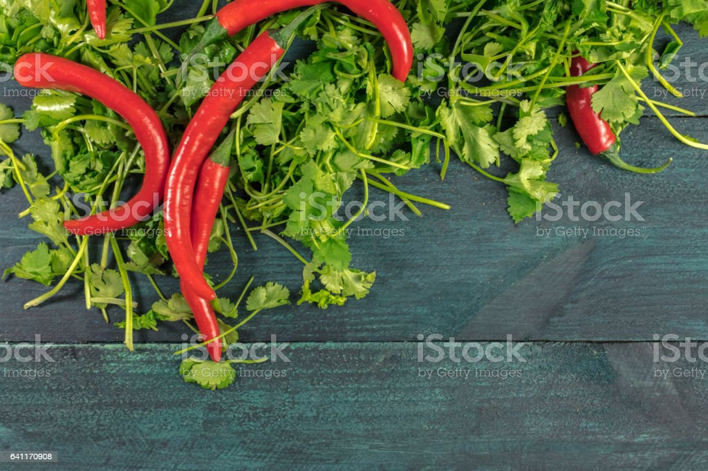 Red hot chili peppers and cilantro leaves with copyspace stock photo