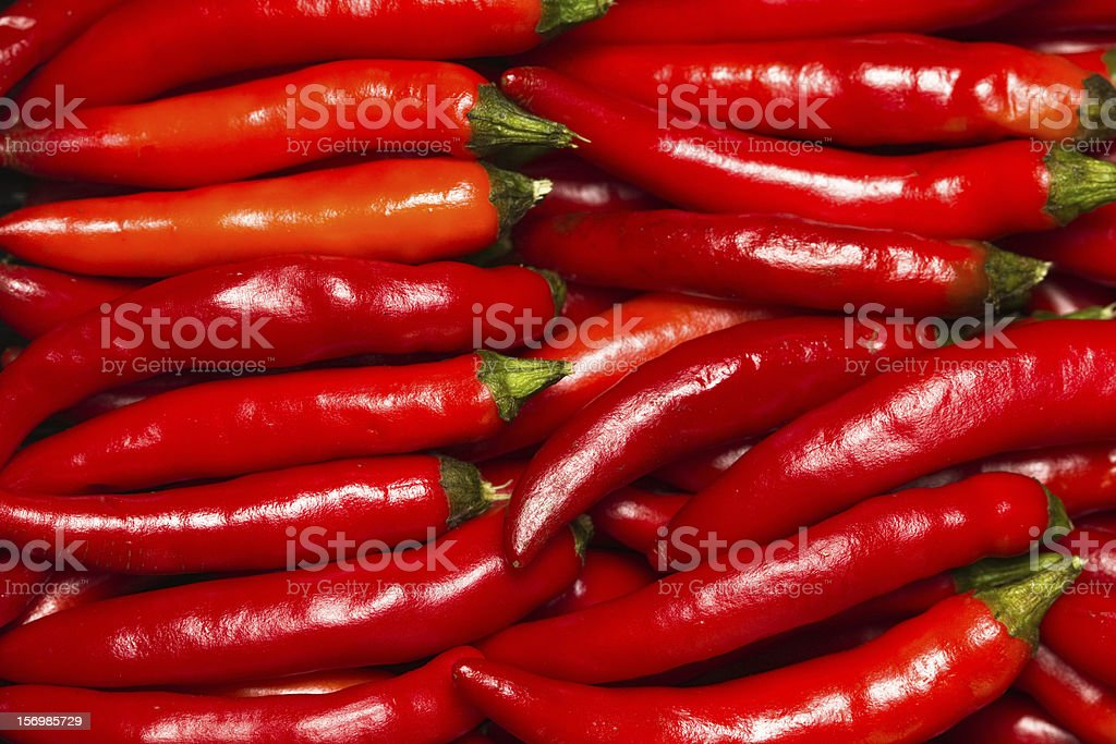 Red hot pepper royalty-free stock photo