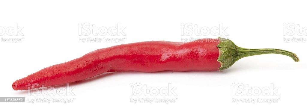 Red hot serrano chili pepper stock photo